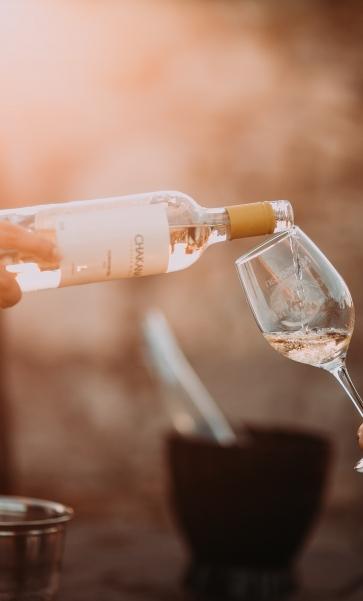 Wine tasting and sunset on the island of Hvar